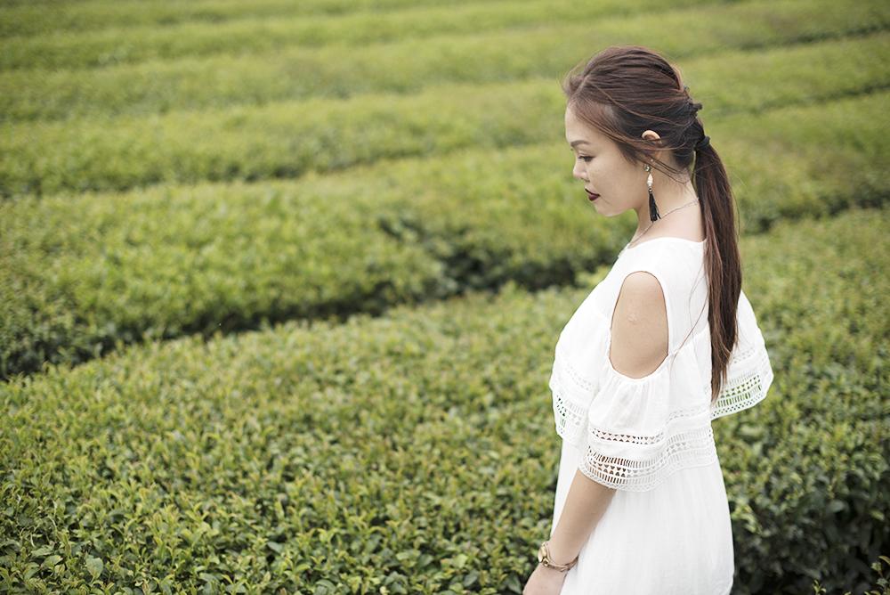 Innisfree Jeju House Green Tea Plantation