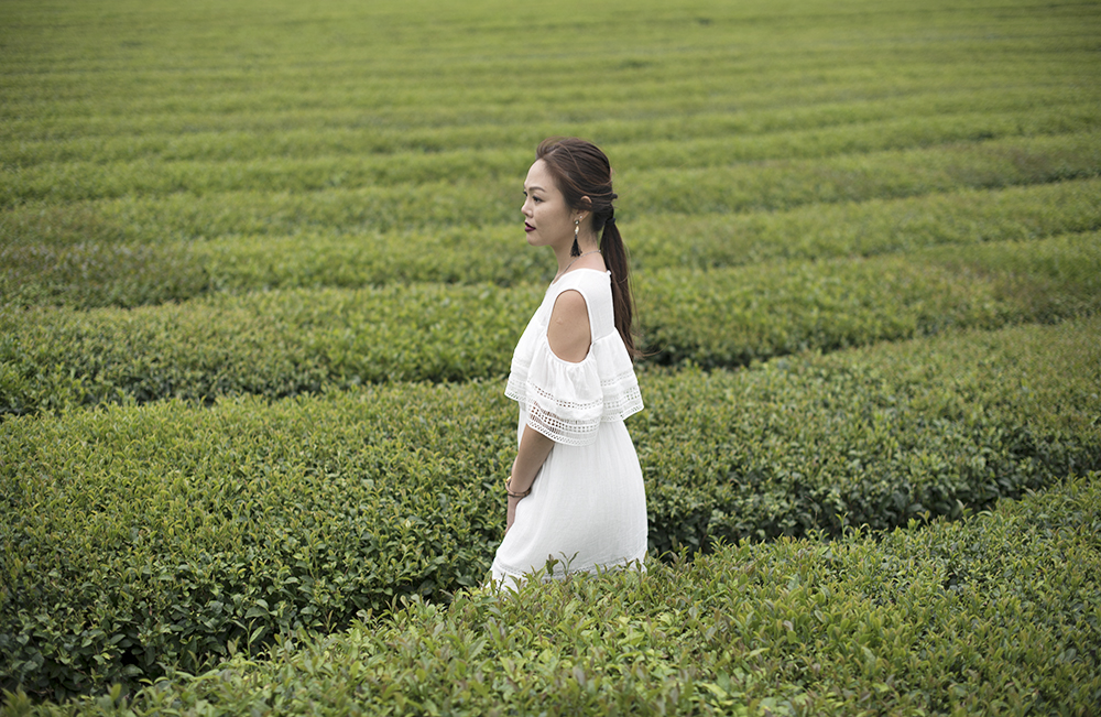 Innisfree Jeju House Green Tea Plantation