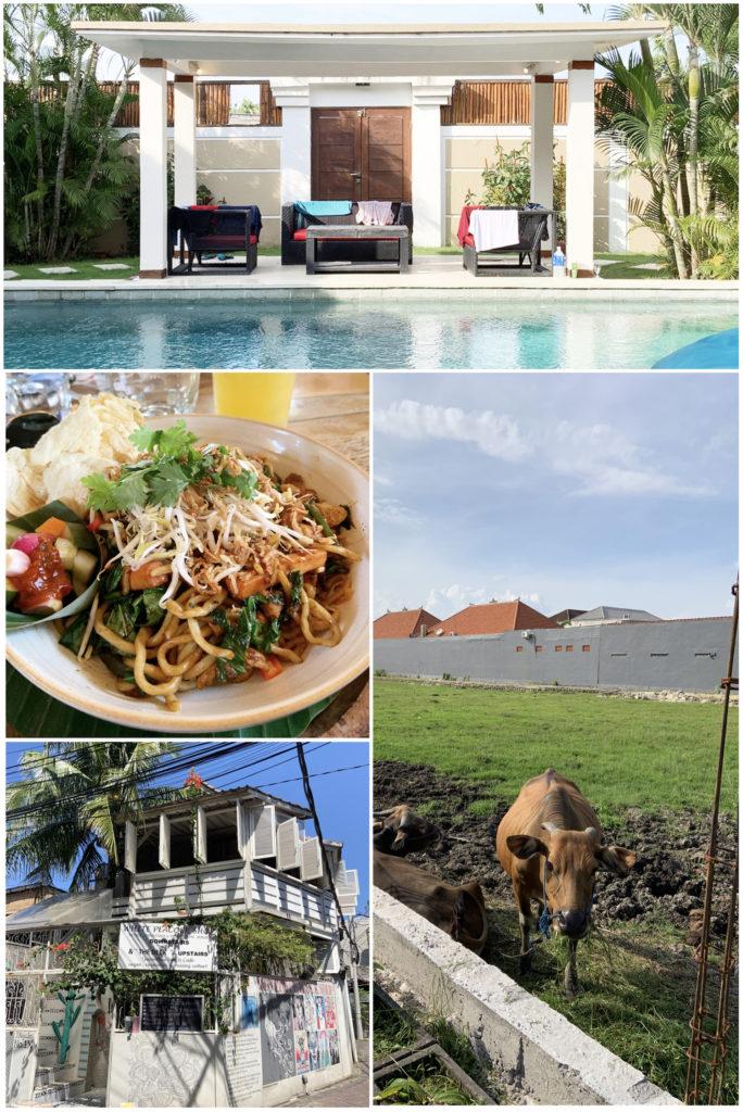 Bali Life Roxanne Chia